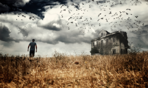 zombie-foreclosures-q2-2015-realtytrac-