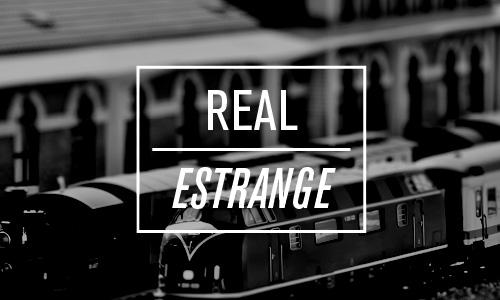 REAL-Train
