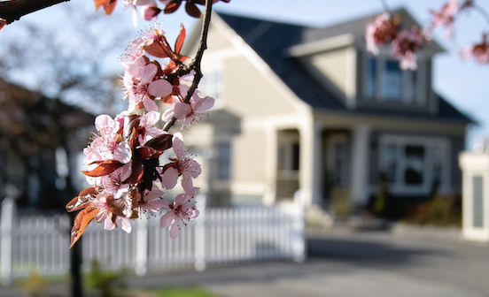 spring-home-buyers-guide-redfin